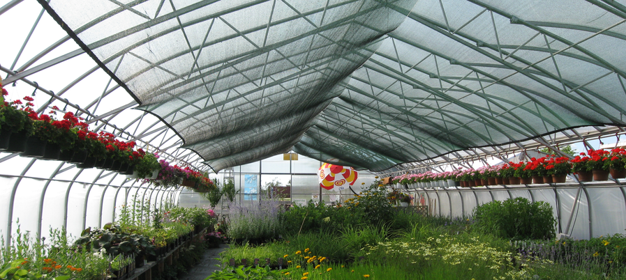 Horticultural Netting