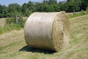 Bale Net Wrap