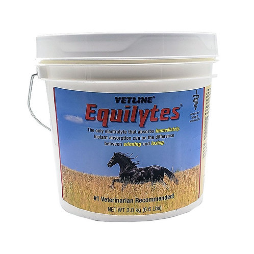 Equilytes Powder