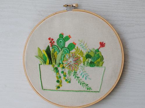Kit descargable cactus y sucuelentas