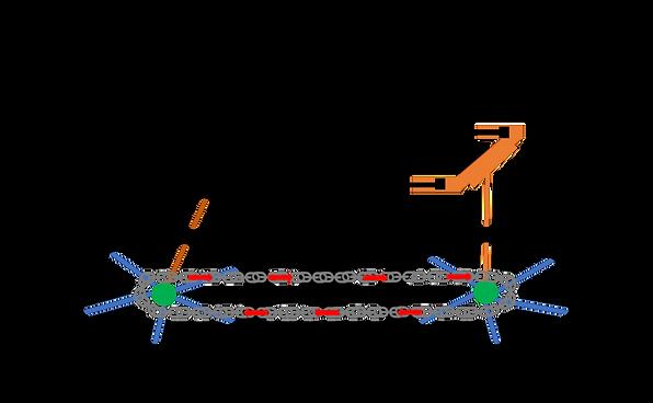 Blank Diagram-9.png