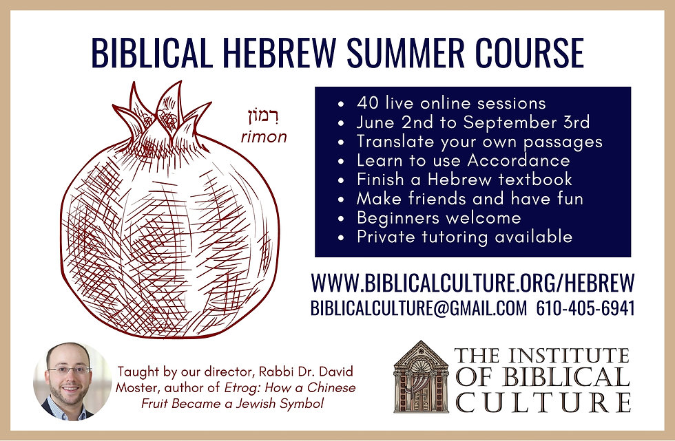 Biblical Hebrew class tutor study book