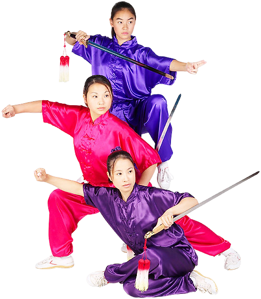 kisspng-wushu-template-kung-fu-world-wid