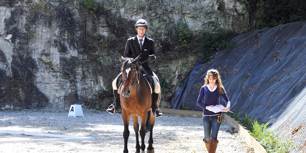 Christmas Dressage inc Freestyle to Music Series