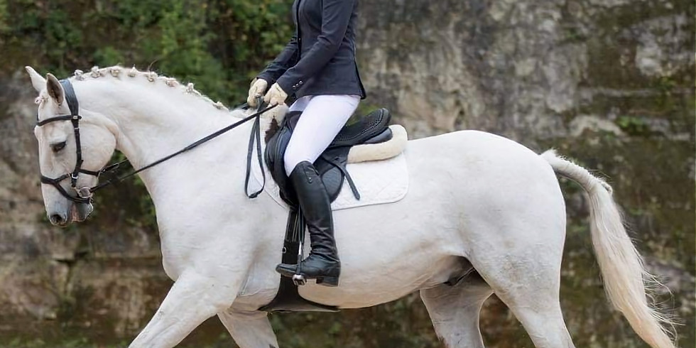 Dressage***Pick Your Own Test Times**