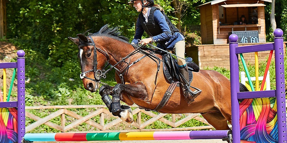 New Year Winter Showjumping £50 1st Prize