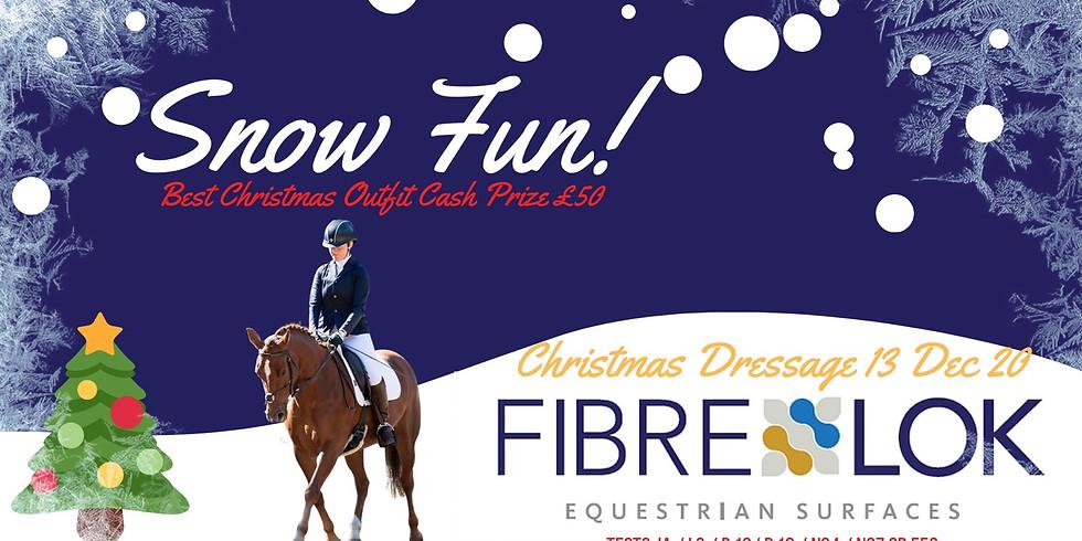 Fibrelok Christmas Dressage***Pick Your Own Test Times**
