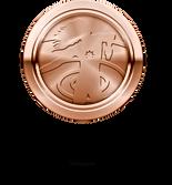 FME-Bronze-FBC copy.png