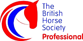 Equine-Careers-British-Horse-Society-Car