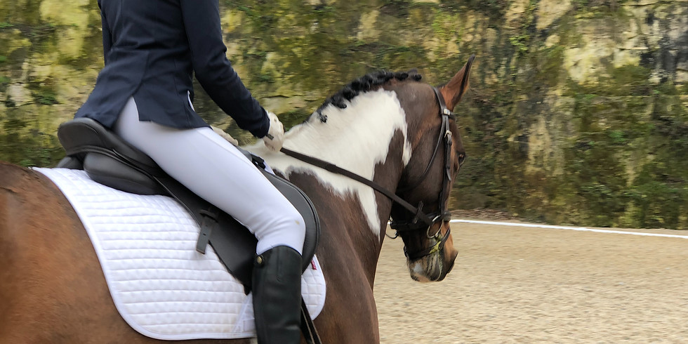 Unaff Dressage inc Freestyle to Music Series (Open to All)