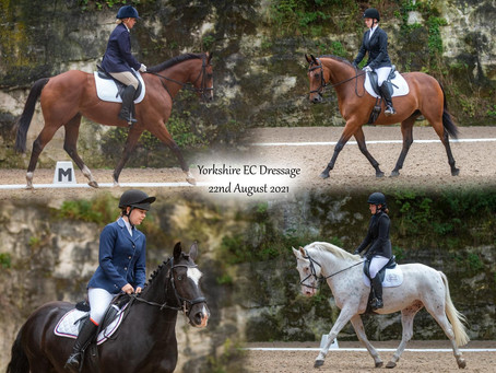 MEL KING AND GULLIVER'S TRAVELS STEAL THE SHOW AT THE AUGUST DRESSAGE EVENT