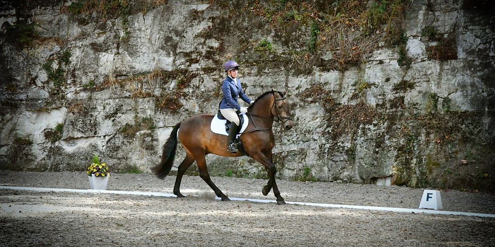 Unaffiliated Dressage Open to All and inc Trailblazers 2019 2nd Rounds
