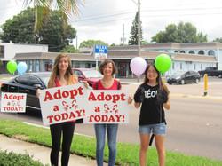 Adoption Volunteers