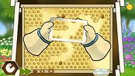 Harvest Honey  Geo Tots BeeAmazed