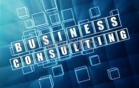 Transcription Service - 5 Minute Spotlight:  Management Consultant Transcription Support