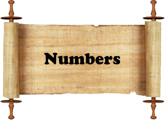 Numbers Scroll.png
