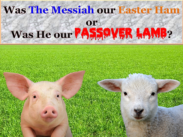 Was The Messiah our Easter Ham or Was He our Passover Lamb?
