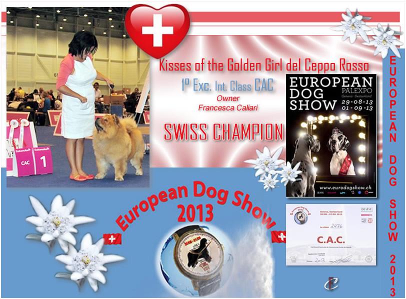 Geneve (CH) - European Dog Show - Swiss Champion