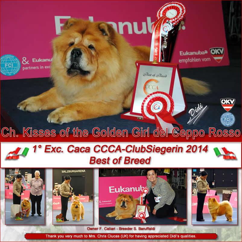 Salzburg (A) CCCA - ClubSiegerin 2014 BOB