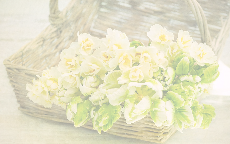 basket-with-flowers-spring-tulips-daffod