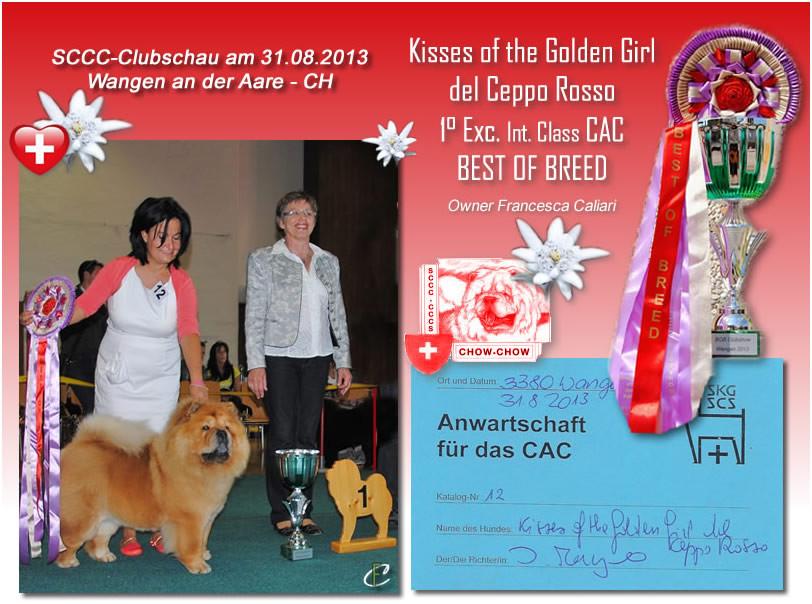 Wangen an der Aare -CH- SCCC-ClubShau 2013 BOB