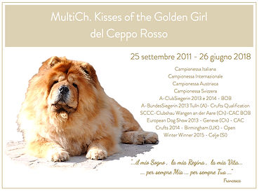 Kisses of the Golden Girl del Ceppo Ross