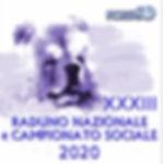 IMG_1796 - Copia.jpg
