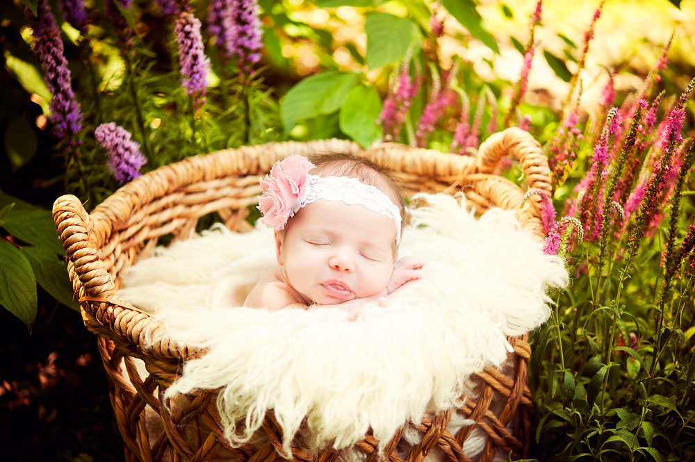Newborn photography sample of newborn in basket by Eizabeth Marie Photography