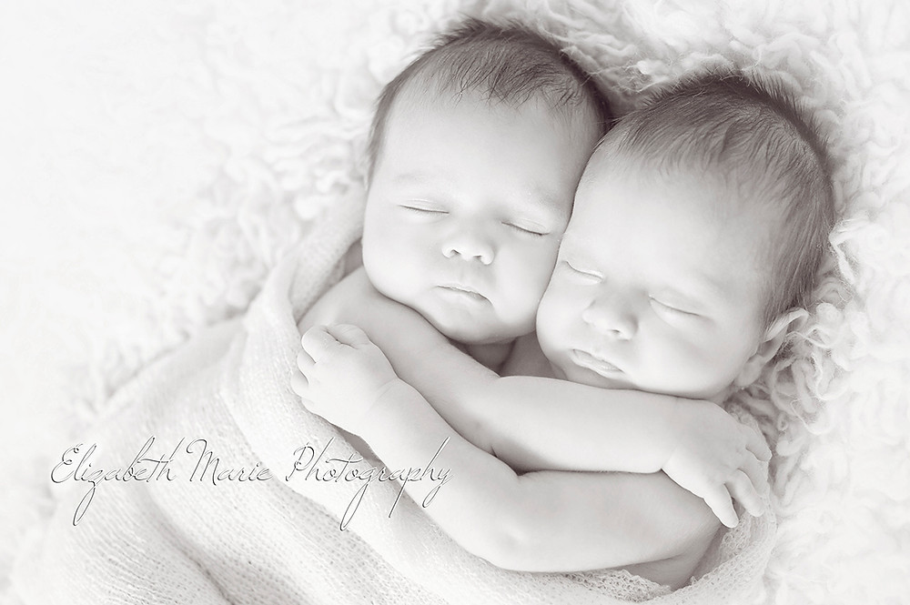 newborn twins hugging during a photo shoot by Elizabeth Marie Photography