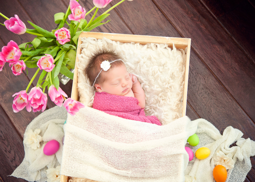 Spring or Easter set up Newborn Session