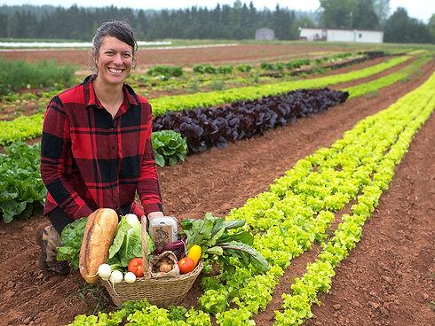 Farmer Woman Field Lettuce Organic Farm CSA basket