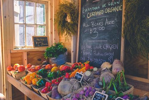 Farm Stand Organic Farming Market Veggies Prince Edward Island PEI Fresh Local