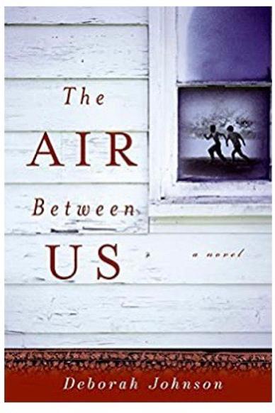 The Air Between Us: A Novel Johnson, Deborah
