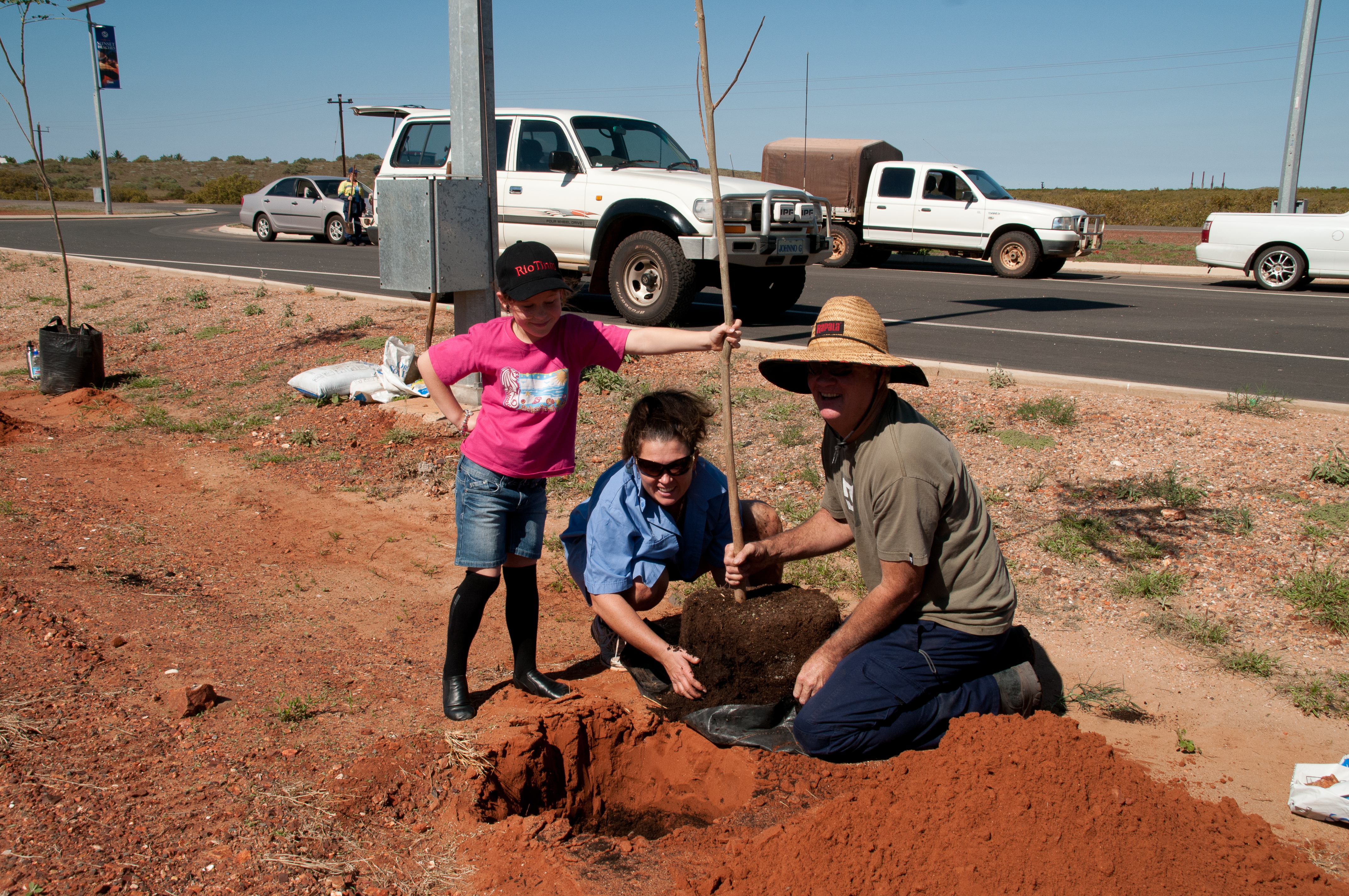 poinciana planting-3