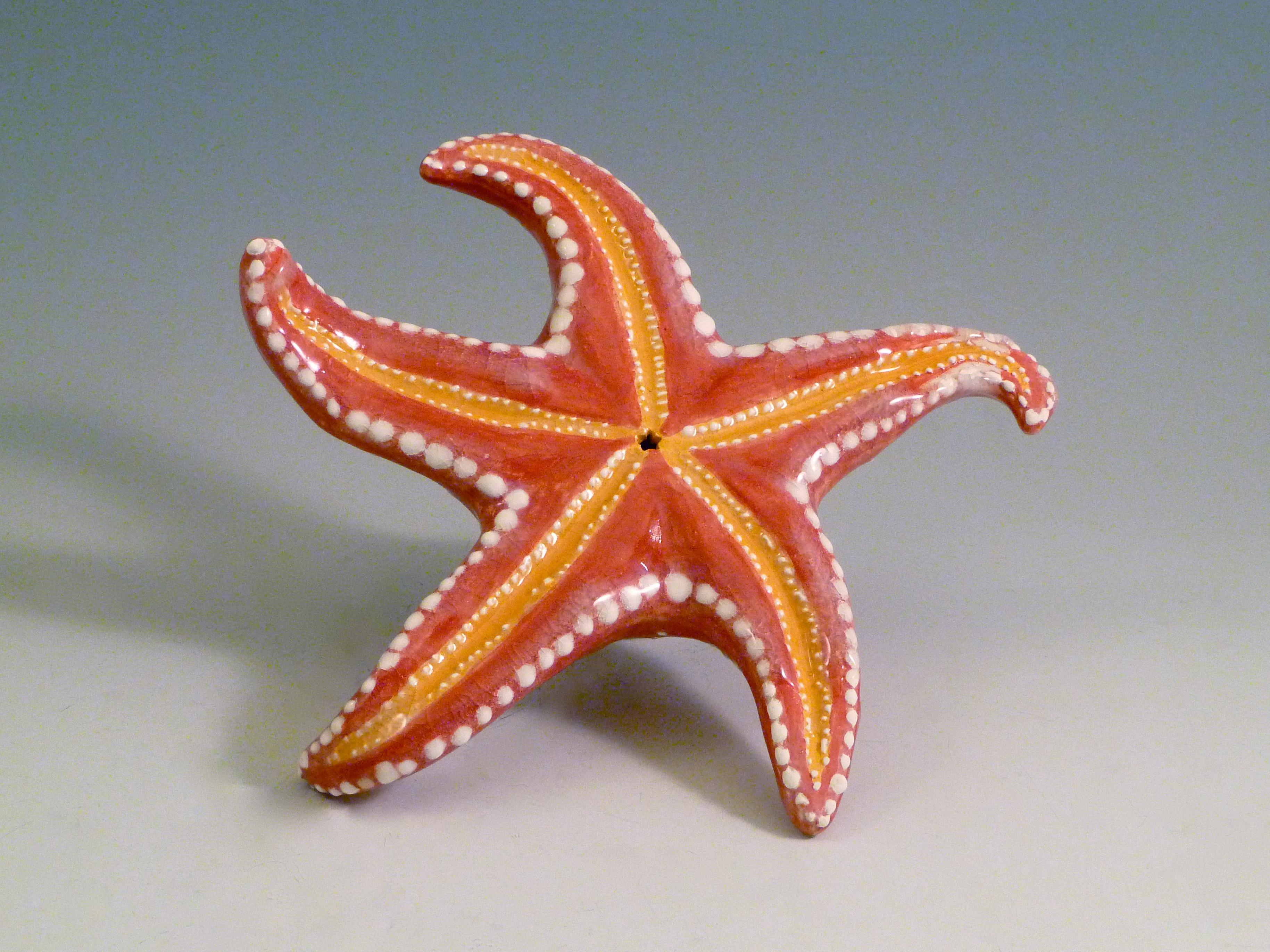 Starfish (back)
