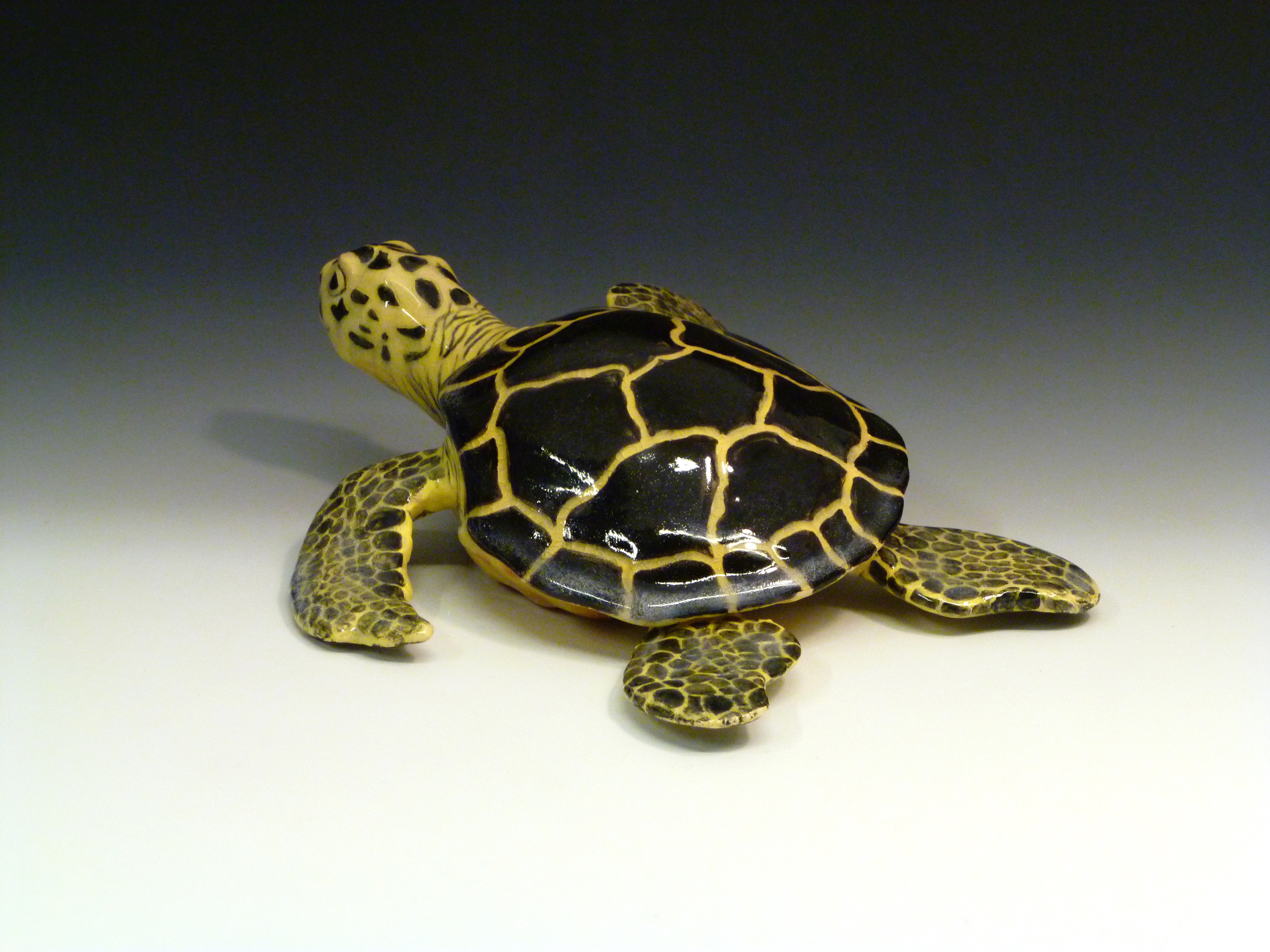 Sea Turtle (back)