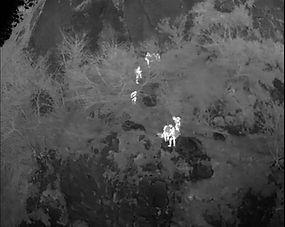 SAR-cliff-stretcher-rescue.jpg