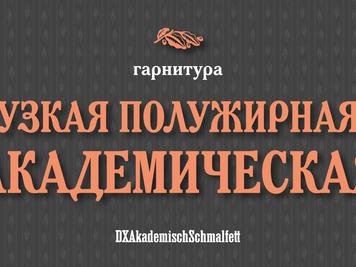 Шрифт Академический узкий полужирный/DXAkademischSchmalfett
