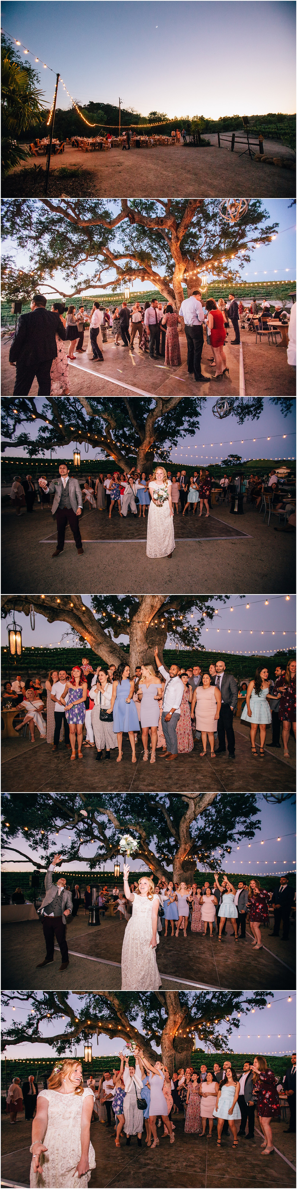 Pink wedding Cass Winery Paso Robles Wedding Wine Country Wedding