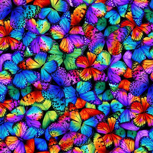 Timeless Treasurers Packed Multi Bright Butterflies