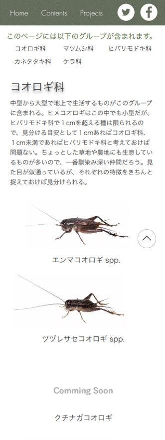 mobile_all.jpg