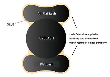 flatplus2 english.jpg