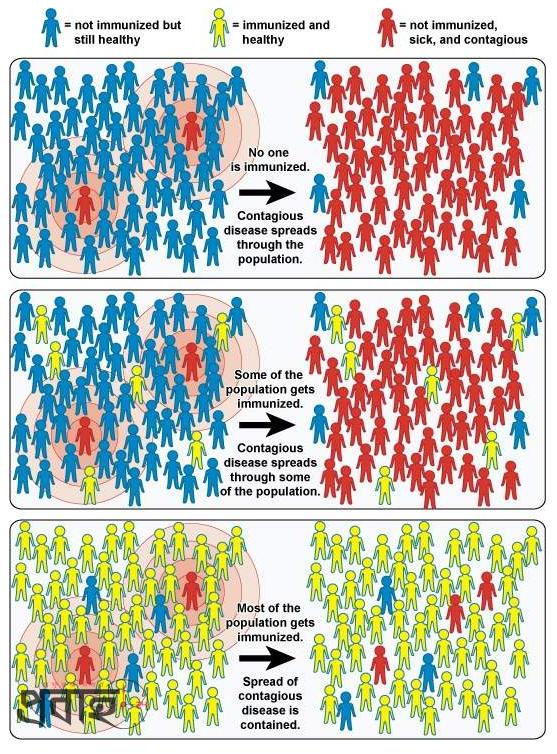 herd_immunity.PNG