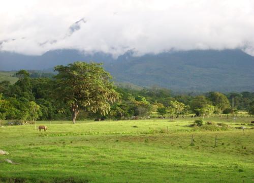 Pictured: Tachira, Venezuela. Not pictured: Lothlorien. Source: www.panoramio.com