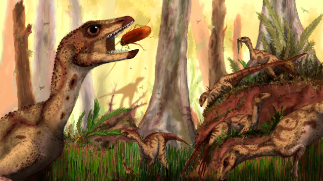 Pictured: Laquintasaura enjoying a Tachiraraptor-free moment Source: www.sci-news.com