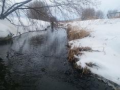 Midge water banks .jpg