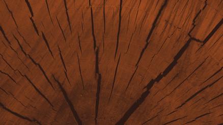 Brown bois