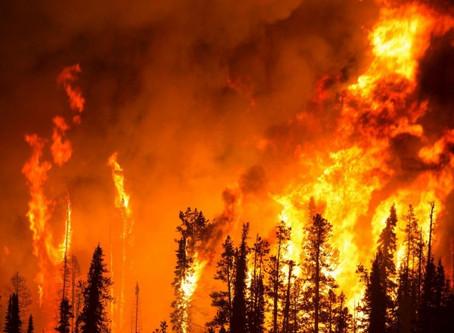 Klimatický chaos: Kapitalismus je na vině
