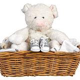 Pig Stuffie e scarpe