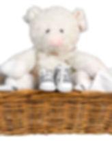 Cerdo stuffie y zapatos